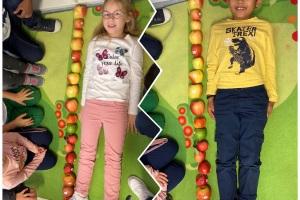 P1B : La pomme